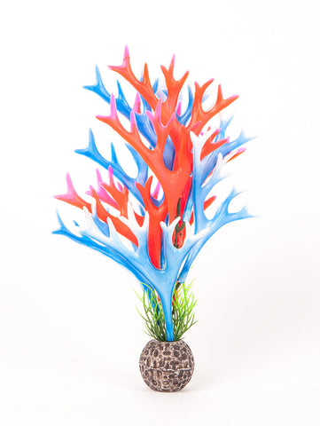 "Multi-colored, Blue/ Red Approx. 8"" Staghorn Plant Decor"