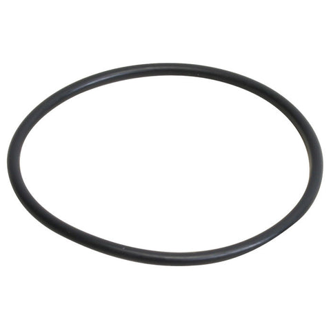 Replacement O-Ring for the CF400-UV Barrelhead
