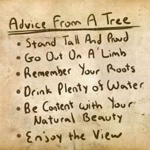 Be like a tree.
