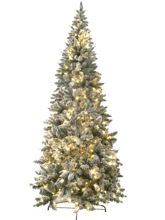 Jolly Workshop JW-FM06 6' Prelit Artificial Flocked Magnolia Fir Tree 200 LED Warm Lights, 458 Tips With Metal Stand