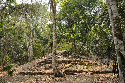 Archaeologists Discover Mysterious Mayan Citadel in Belize