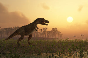 Mesozoic Period: New Evidence of Warm Blooded Dinosaurs