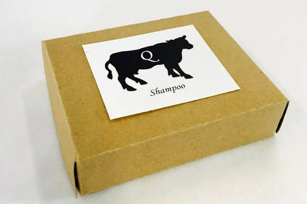 Ancient Recipe Turns Cow Urine Into A Shampoo! - Ancient