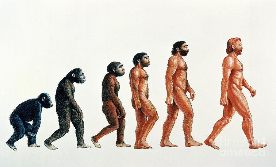 Why Darwinian Evolution Is Flatly Impossible