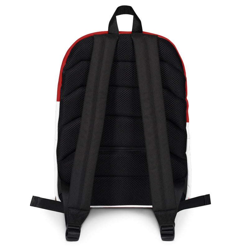 Backpack, BAGS, Bertolee Brand