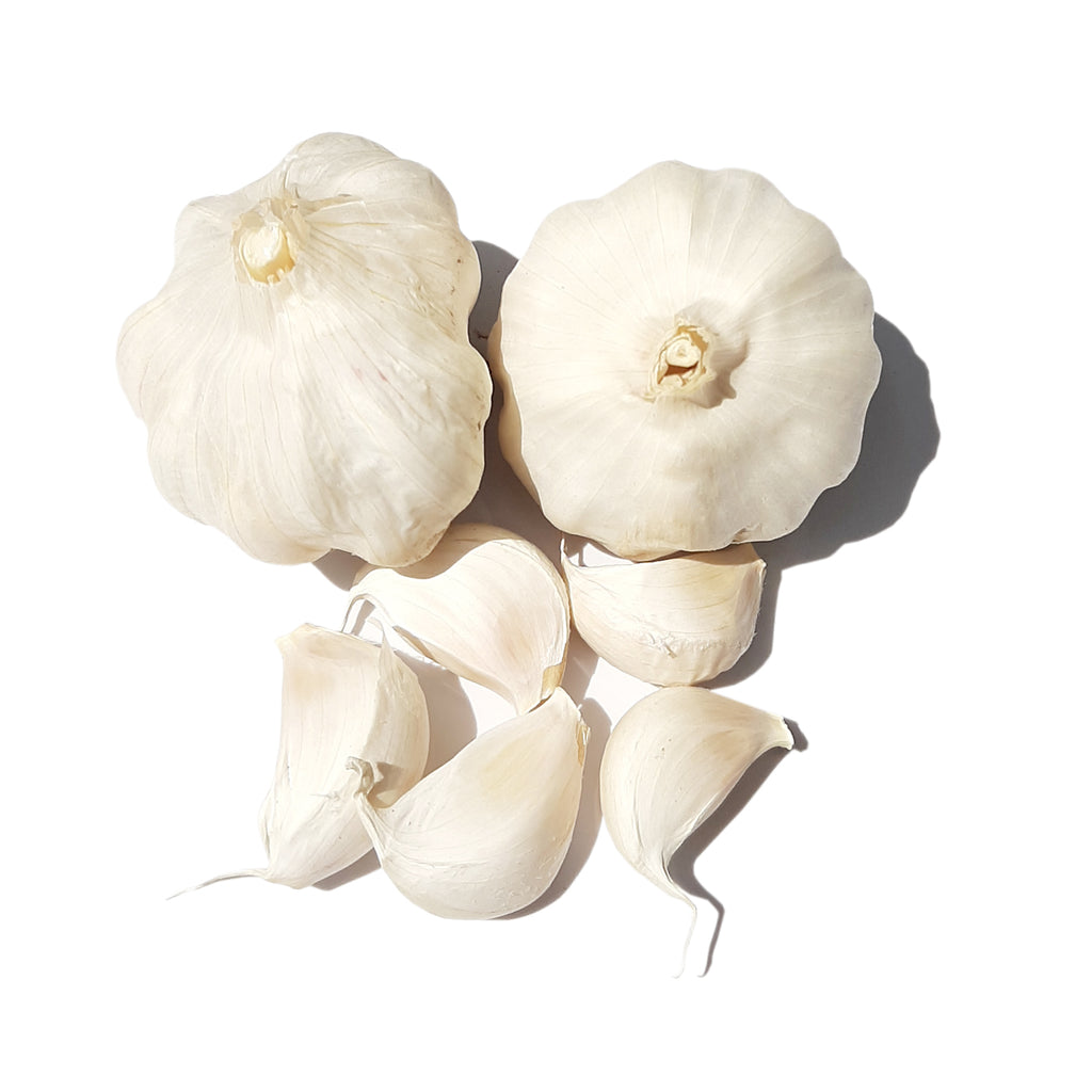 Ashok White Garlic