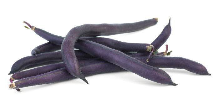 French Purple Bean