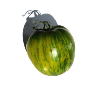 Green Bell Pepper Tomato