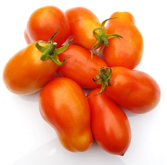 Royal Chico Tomato