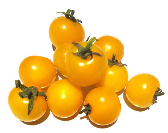 Yellow Pygmy Tomato