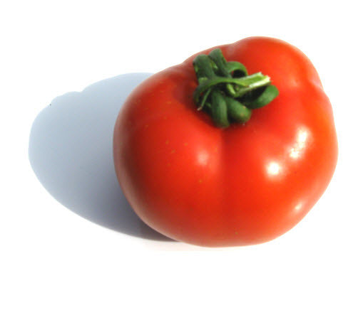 Long Keeper Tomato