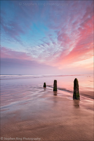 06642 - Westward Ho!