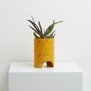 Capra Designs Archie Planter - Golden