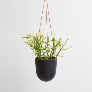 Capra Designs Block Color Hanging Planter - Black