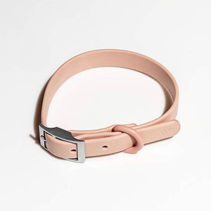 Wild One Dog Collar - Blush