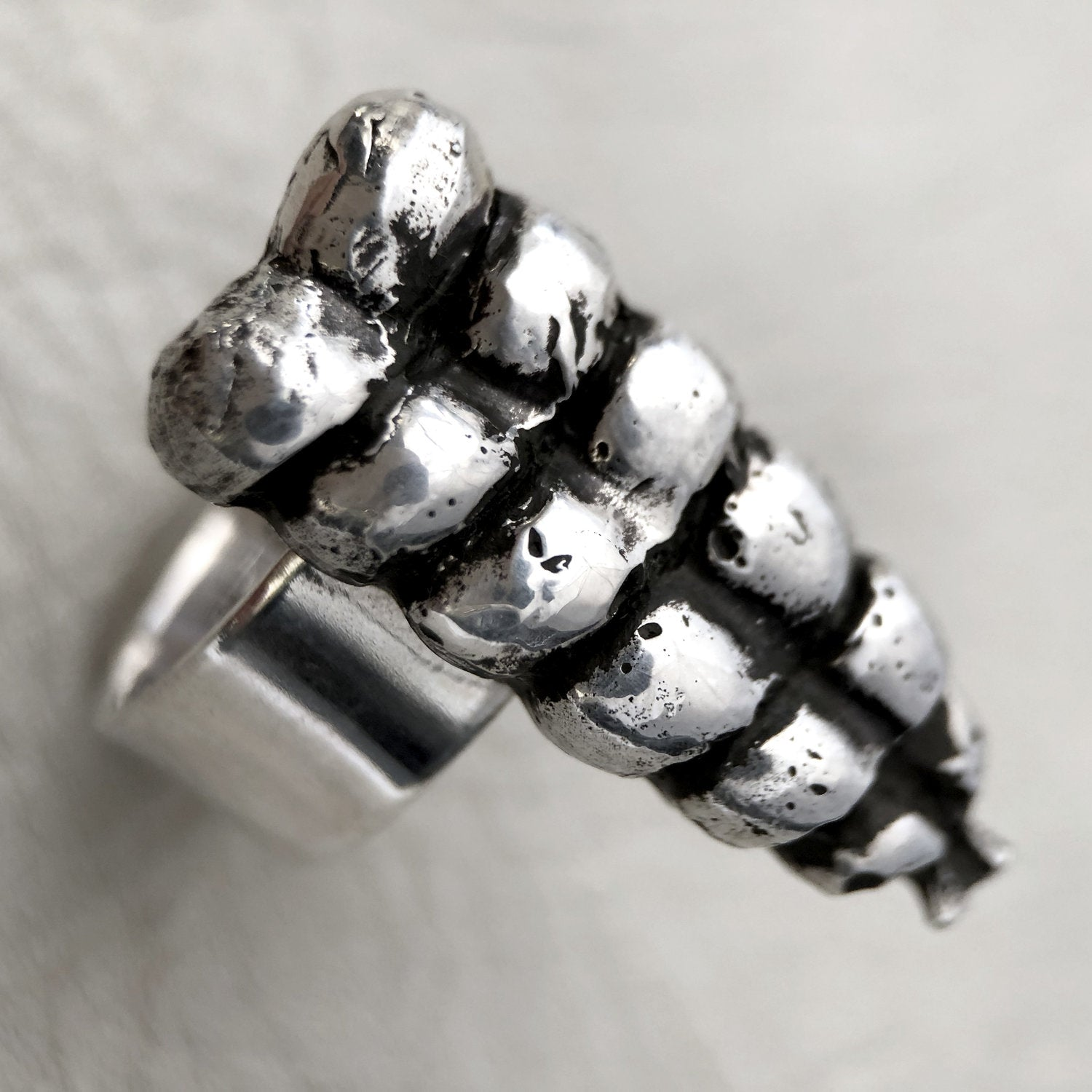 Heliotrope | Heliotrope Rattle Ring - Silver | Jewelry - Rings | Phoenix General Store