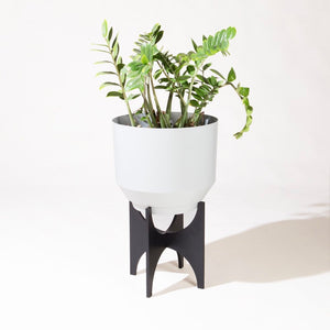 "Yield 16"" Planter Stand - Black - Phoenix General"