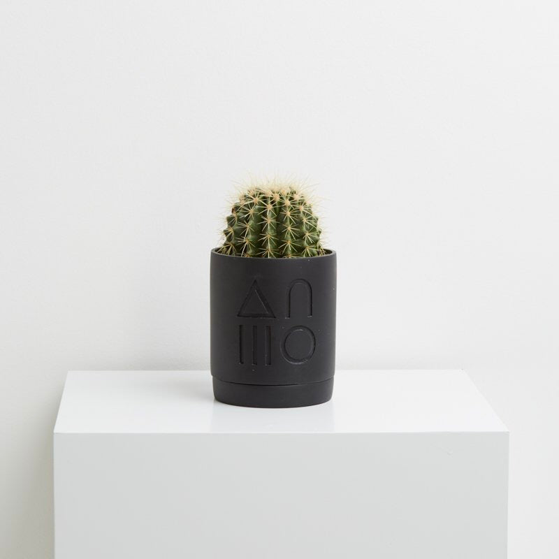 Capra Designs Etch Planter - Black