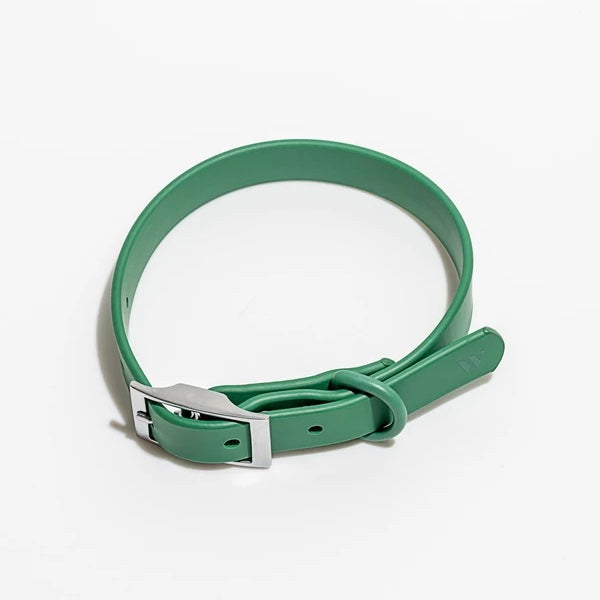 Wild One Dog Collar - Spruce