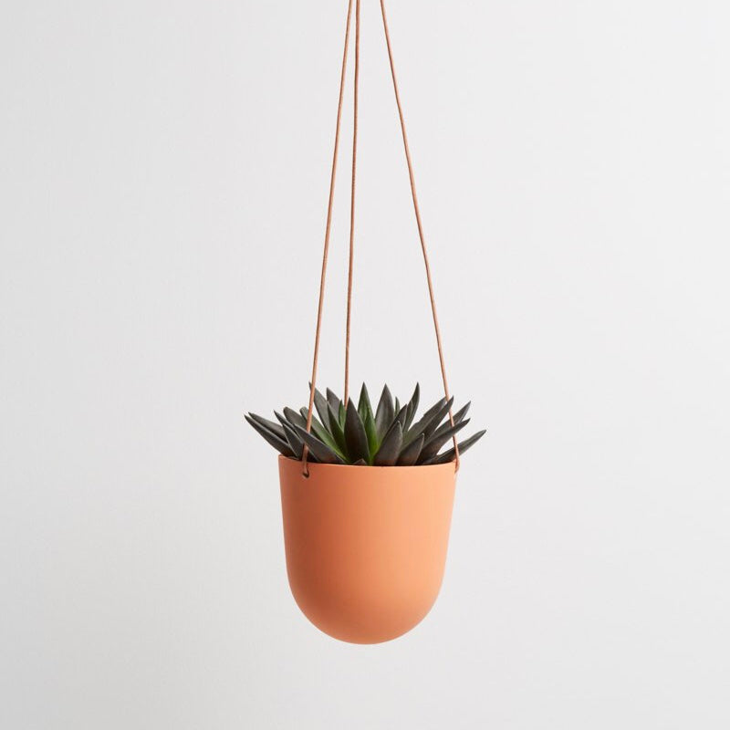Capra Designs Block Color Hanging Planter - Desert