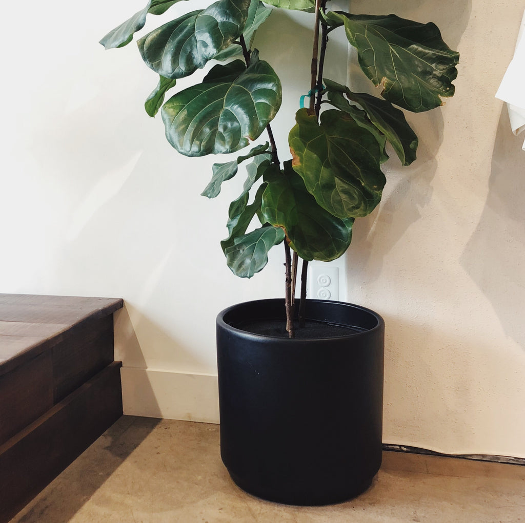 "Phoenix General | 15"" Cylinder Pots 
