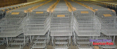 Shopping Carts Nested