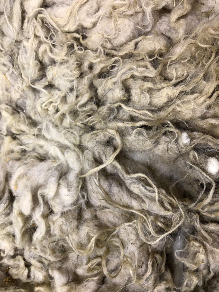Taste Of The Wind Hygge's Moorit-Grey Raw Icelandic Fleece