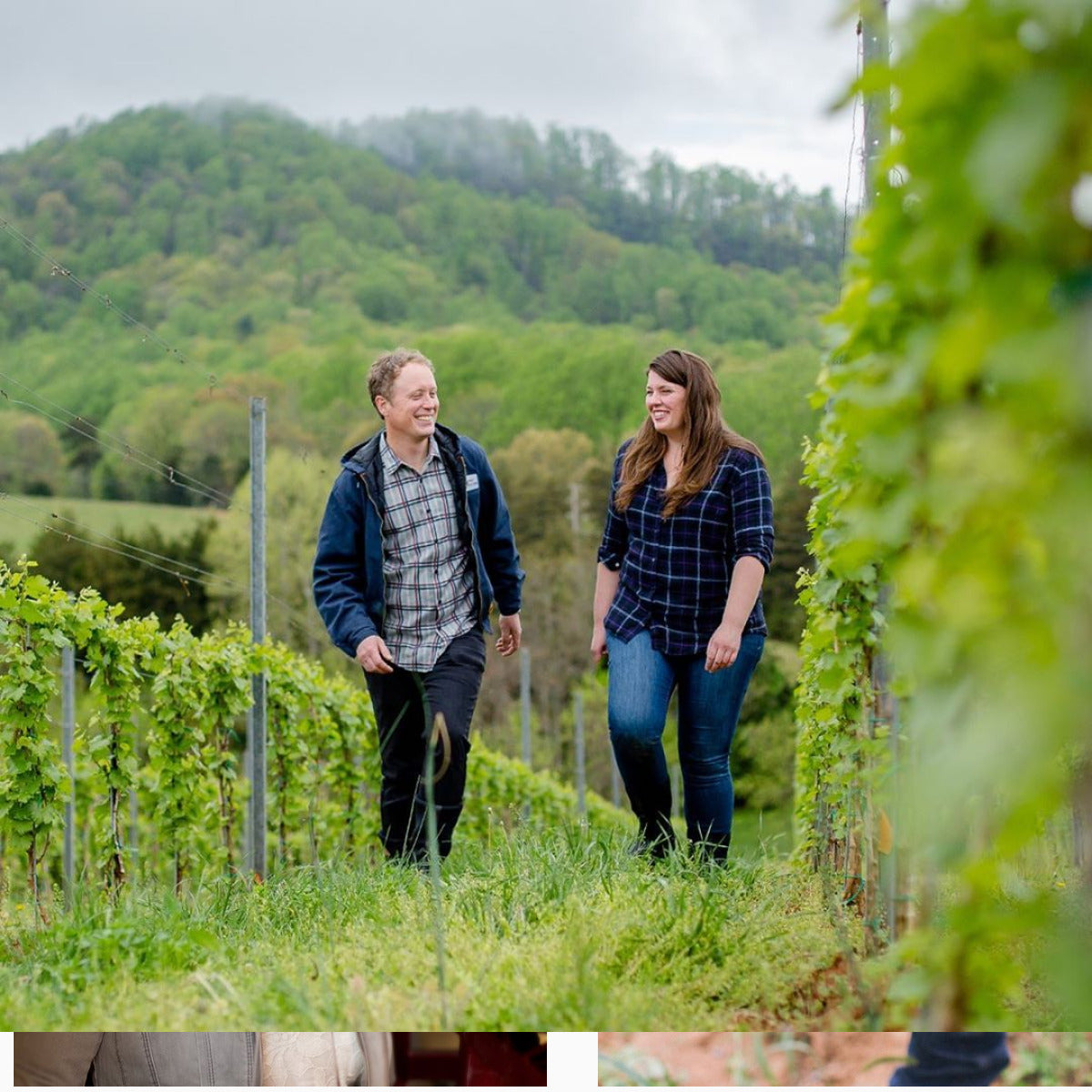 The Early Days Are Exciting: Virginia Wines' Emerging Originality