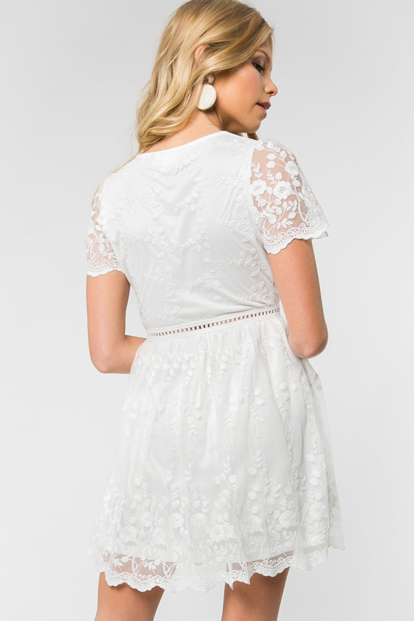 Dress - Short Sleeve V-Neck Lace Fit n Flare