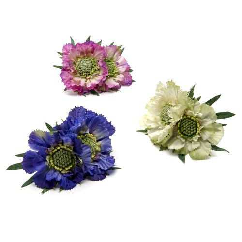 Double Scabiosa Napkin Ring