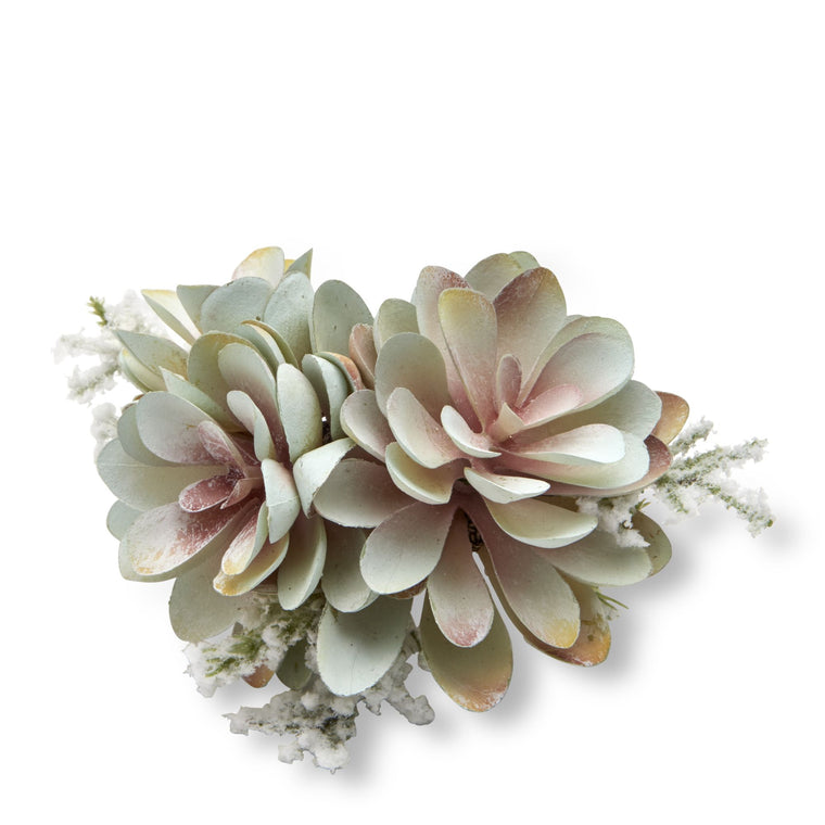 Winter succulent Napkin ring
