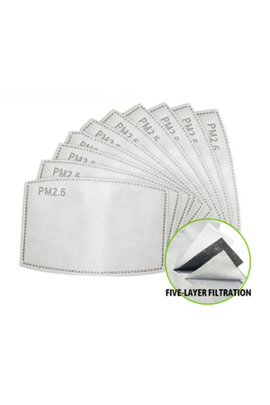 Set of Two PM2.5 Five-Layer Activated Carbon Filters