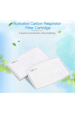 Filters Set of Ten  PM2.5 Five-Layer Activated Carbon Filters