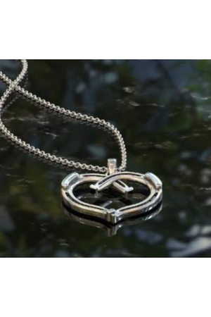 Best of Luck Horseshoe Necklace Silver