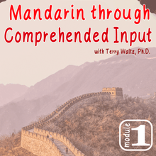 Load image into Gallery viewer, CI Mandarin Chinese (Adults) with Terry Waltz: Module 1