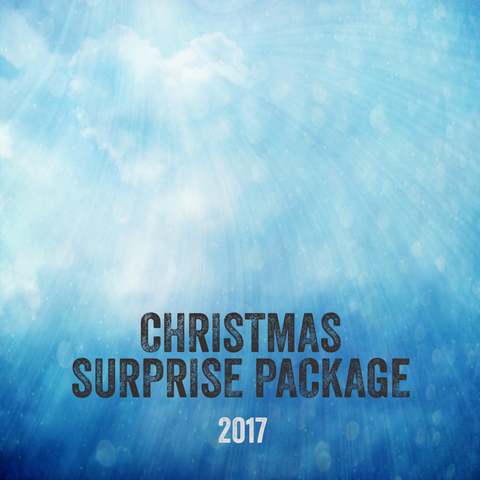 Christmas Surprise Package (preorder)
