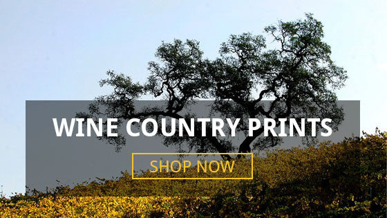 Sonoma Wine Country Prints