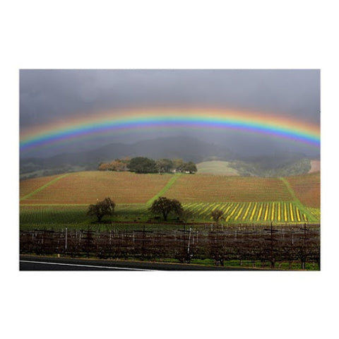 Rainbow over Sonoma Valley