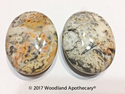 Crazy Lace Agate Palm Stones | Woodland Apothecary®