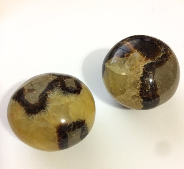 Palm Stones - Septarian