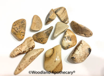 Picture Jasper Tumbled Stones | Woodland Apothecary®