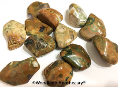 Rainforest Rhyolite Tumbled Stones | Woodland Apothecary®