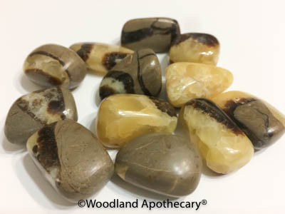 Septarian Tumbled Stones | Woodland Apothecary®