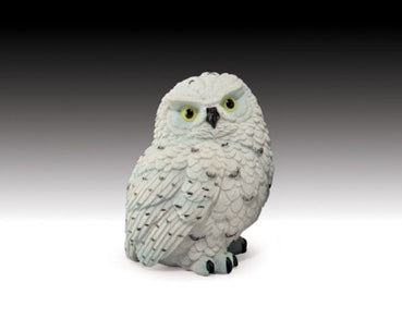 Snowy Owl | Woodland Apothecary®