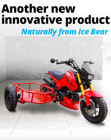 PMZ125-1S ICEBEAR MOTORCYLE 125CC FOR CHEAP. 3 WHEEL MOTORCYCLE FOR SALE UBER DELVIERY BIKE FOR CHEAP ONLINE