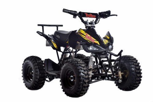 TomRide Electric ATV Quad VTT 500 Watts 24 Volts TR240