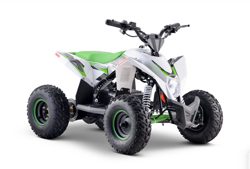 2020 Electric Mid-Size ATV 1300 Watts 48 Volts Lithium