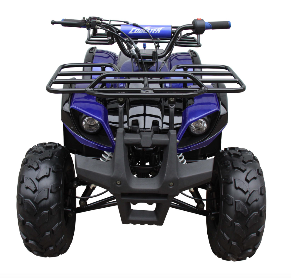 Coolster ATV3125XR8U ATV 125cc ATV3125XR8US 4 wheeler quad for cheap blue