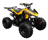 Raptor 125cc Quad Sport ATV - Fully Automatic - ATV-3125CX-2