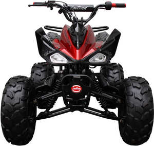 Raptor 125cc Quad Sport ATV - Fully Automatic - ATV-3125CX-2 [PRE-ORDER]